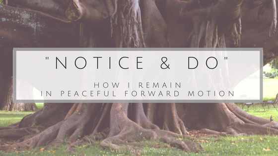 notice & do (3)